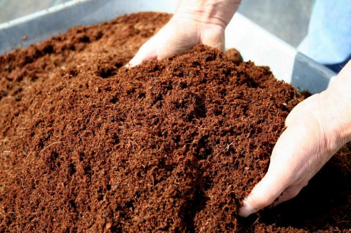 Vermicompost Waste Disposal